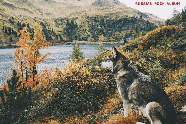 101 РУ русский рок